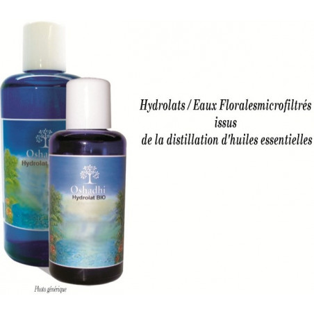 Eau florale Thym fort - Thymus vulgaris - Bio