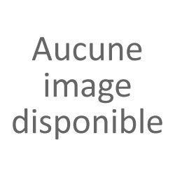 Beurre de Cupuaçu - Theobroma grandiflorum - Sauvage